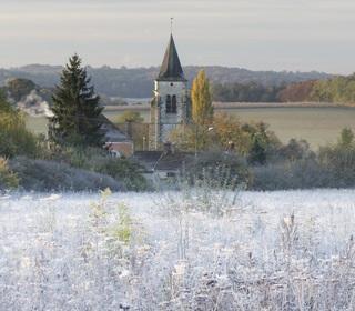 Retour des gelées en plaine